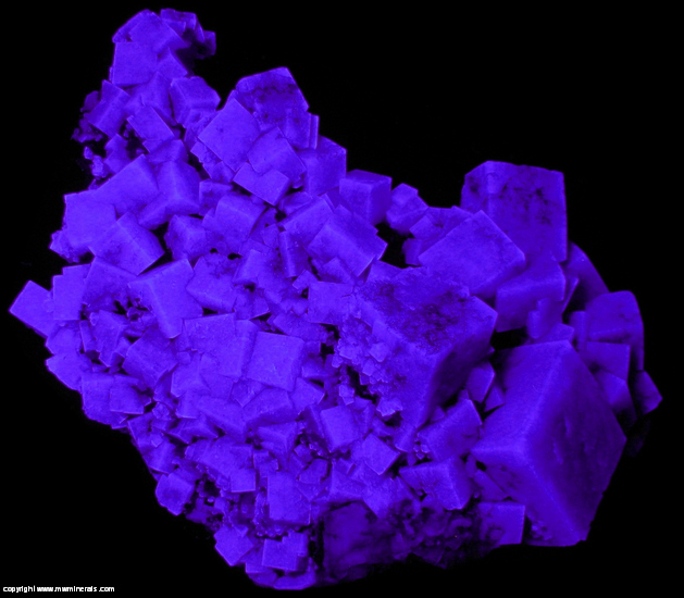 Fluorescent Mineral Specimen: Fluorite with minor Quartz from Heights Mine, Westgate, Weardale, North Pennines, Co. Durham, England