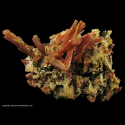 Minerals Specimen: Orange Quartz on Sphalerite from 2nd Sovietskii Mine, Dal'negorsk, Primorskiy Kray, Far-Eastern Region, Russia