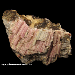 Mineral Specimen: Washboard Tourmaline from Black Mountain Quarry, Rumford, Oxford Co,  Maine