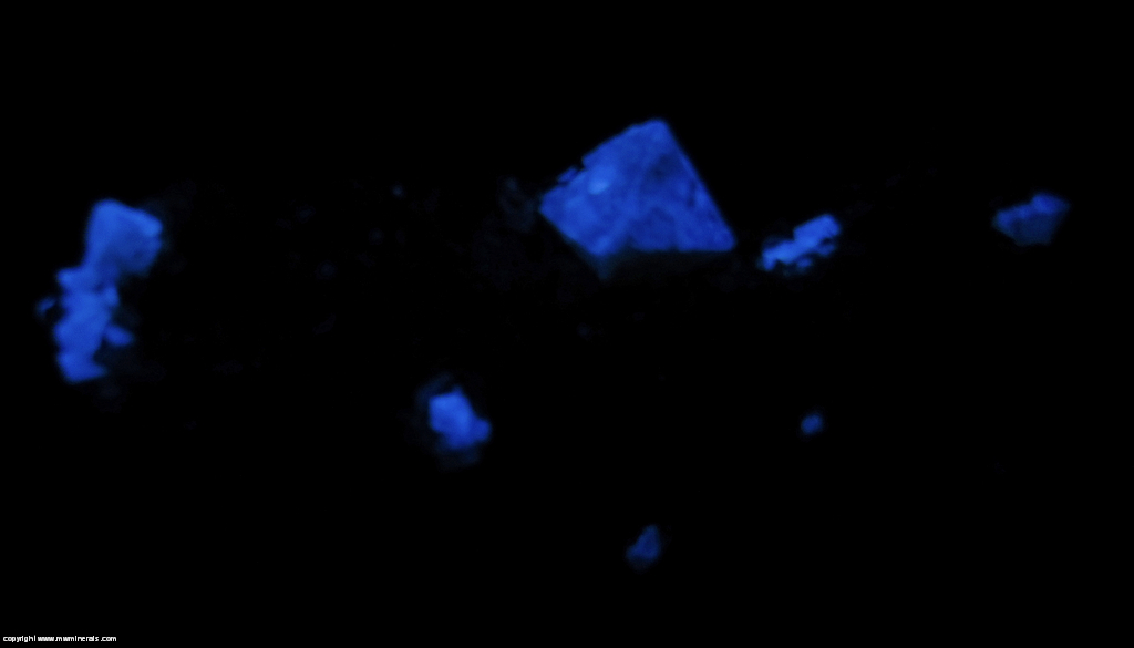 Fluorescent Mineral Specimen: Scheelite on Muscovite from Mt Xuebaoding, Pingwu Co., Mianyang Pref., Sichuan Prov., China