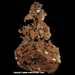 Minerals Specimen: Copper with Casts from Quincy Mine, Houghton Co., Michigan