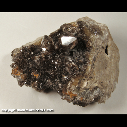 Mineral Specimen: Herkimer Diamonds with Included Carbon from Ace of Diamonds Mine, Middleville, Town of Newport, Herkimer Co., New York