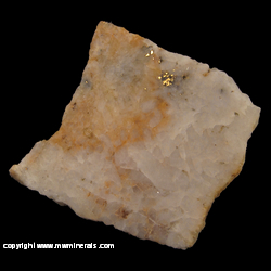 Mineral Specimen: Gold in Quartz with Sulfides from Alaska