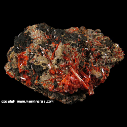 Minerals Specimen: Crocoite, Gibbsite on Goethite from Red Lead Mine, Dundas, Tasmania, Australia