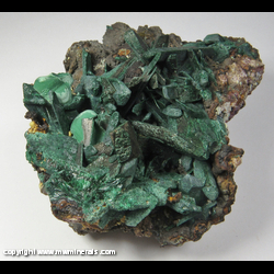 Minerals Specimen: Malachite Pseudomorph after Azurite, Secondary Growth Malachite from Sacramento pit, Sacramento Hill, Bisbee, Warren District, Mule Mts, Cochise Co., Arizona