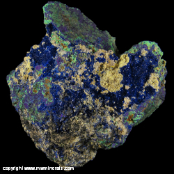 Minerals Specimen: Azurite Crystals, Malachite on Sulfide Matrix from Arizona