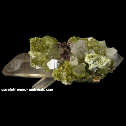 Minerals Specimen: Epidote, Quartz, Axinite-(Fe), Calcite from New Melones Dam, Calaveras Co., California
