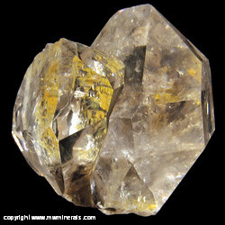 Mineral Specimen: Herkimer Diamonds with Included Hydrocarbon from Herkimer, New York