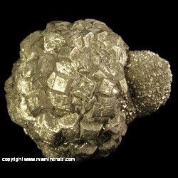 Mineral Specimen: Pyritized Marine Burrow from Ross Co., Ohio