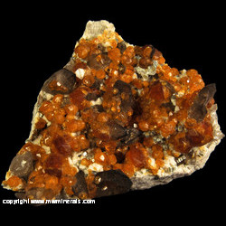 Mineral Specimen: Spessartine Garnet, Smoky Quartz, Microcline, Muscovite from Tongbei, Fujian, China