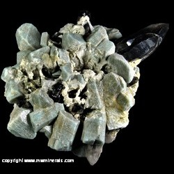 Mineral Specimen: Amazonite, Smoky Quartz, Albite with Casts from Crystal Peak area, Park or Teller Co., Colorado