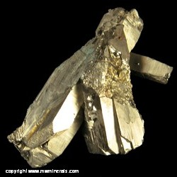 Mineral Specimen: Pyrite Bars from Butterstick Pocket, 1250 foot level, Buick Mine, Iron Co., Missouri